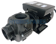 Balboa Niagara Spa Pump - 2 Speed