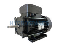 EMG Motor 56F (6.3) - 2 Speed - 3.0Hp
