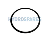 Waterway Filter Lid O-Ring