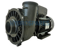 Waterway Executive 48 Spa Pump - 2 Speed