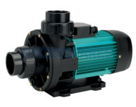 Espa Wiper3 200M Spa Pump - Two Speed