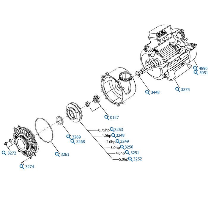 waterway spa pumps diagram  waterway  free engine image